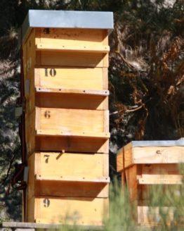 ruche warré, apiculteur warré, ruche warre, ruche andorre, ruche montagne