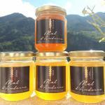 miel de haute montagne, miel de montagne, miel des Pyrénées, miel d'altitude, melip, eos