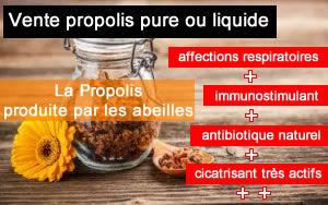 propolis pure, propolis naturelle